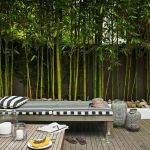 Stunning Privacy Fence Line Landscaping Ideas 87