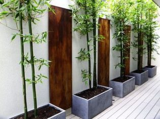 Modern and Contemporary Front Yard Landscaping Ideas 22