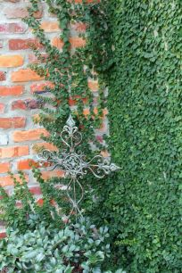 Impressive Climber and Creeper Wall Plants Ideas 11
