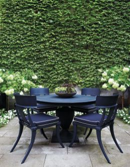 Impressive Climber and Creeper Wall Plants Ideas 2