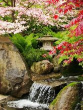 Peacefully Japanese Zen Garden Gallery Inspirations 10