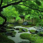 Peacefully Japanese Zen Garden Gallery Inspirations 78