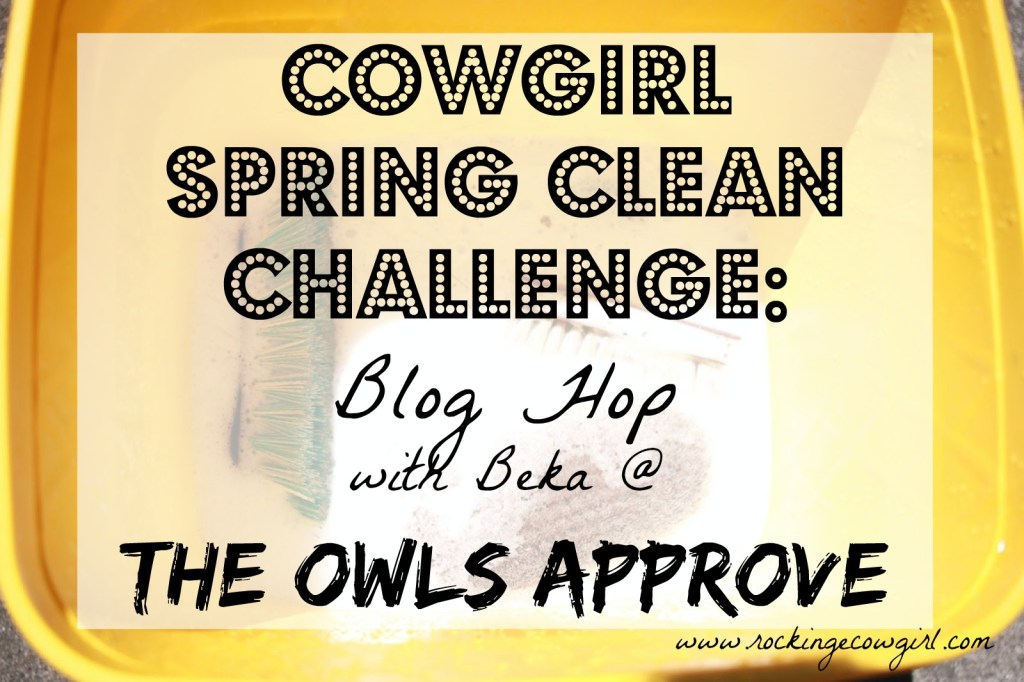 Cowgirl Spring Clean
