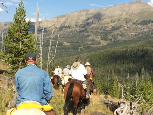 Horseback Riders on the Move