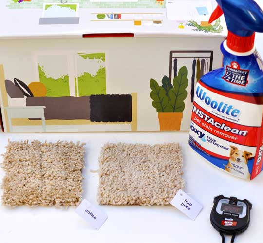 Woolite INSTAclean After - Pet Messes