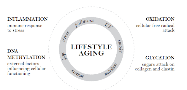Lifestyle Aging