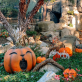 Halloween Events in Southern California 2020