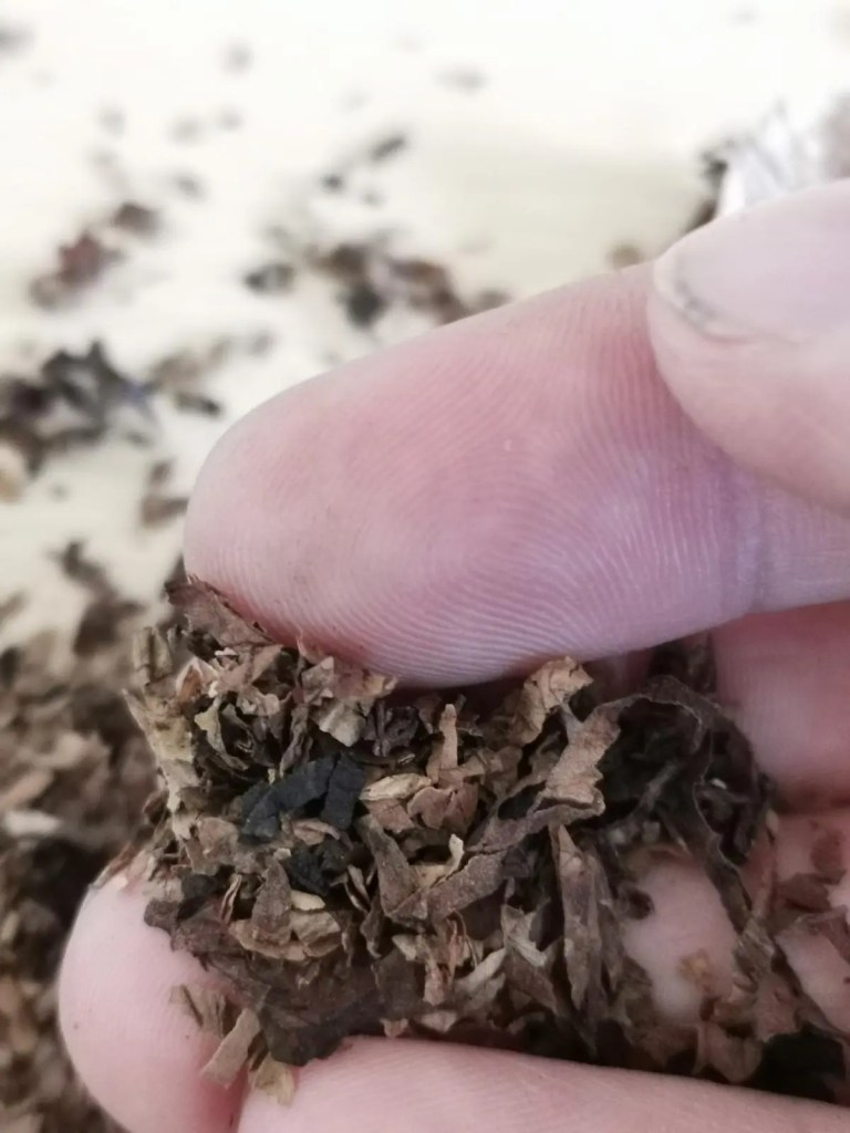 Pfeifentabak zwischen Finger