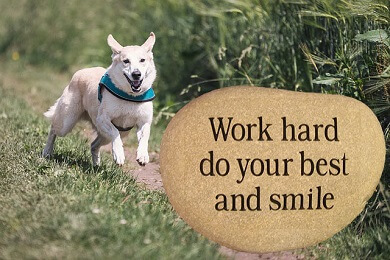 Work-Hard-do-your-best-and-smile