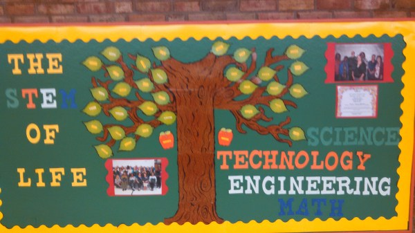Stem Bulletin Board for Elementary