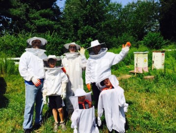 Bee Tours