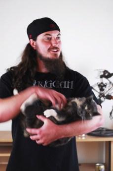 metalcats5
