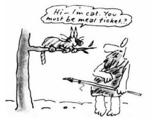 carte cu pisici Terry Pratchett ilustratie