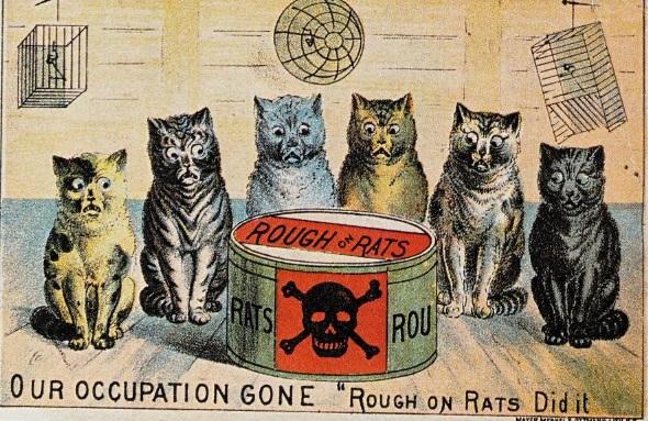 advertising vechi cu pisici