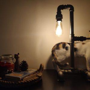 veioza industriala cu pisica si tava cu carti