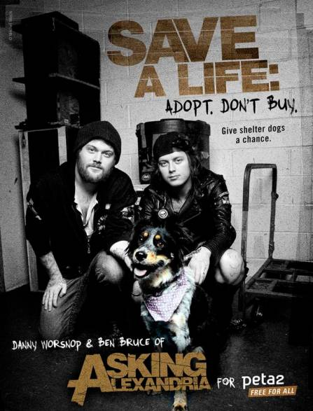 Asking Alexandria and pup in peta2 campaign ad