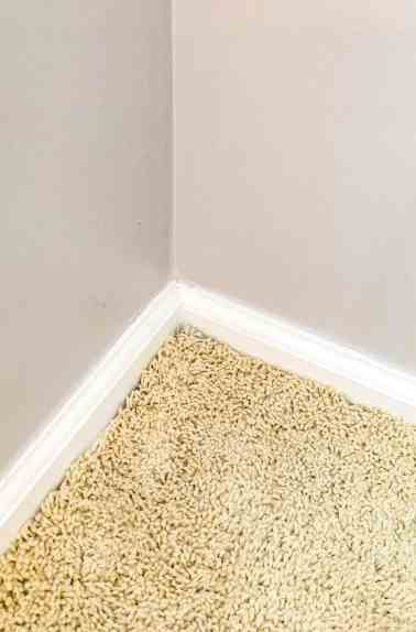 before removing carpet, How to Rip up Carpet