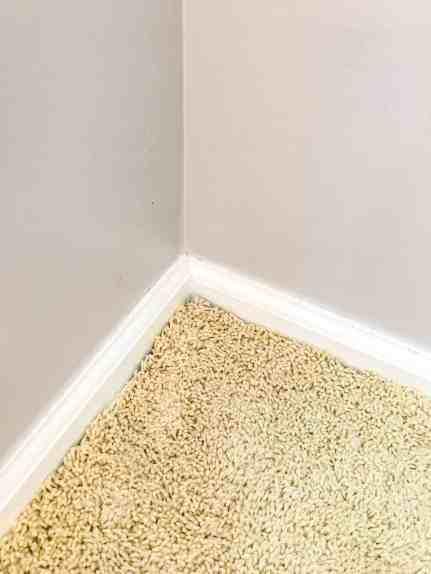 before removing carpet