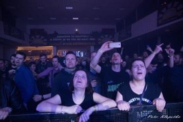 Cocotte Minute fans