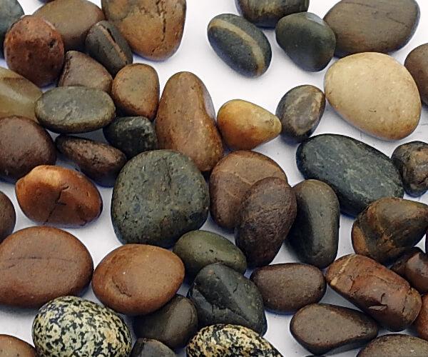 San Diego Brown Pebbles