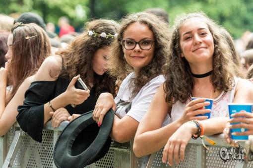 Summer Well Festival, 2017