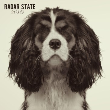 RADAR_STATE_STRAYS.jpg