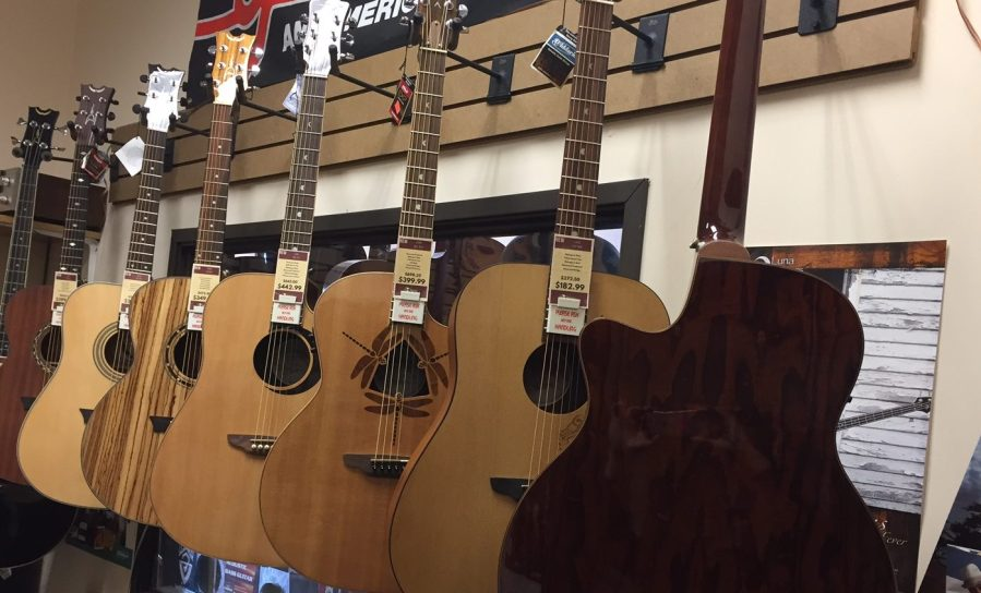 NEW Luna WL ASH Acoustic Guitar