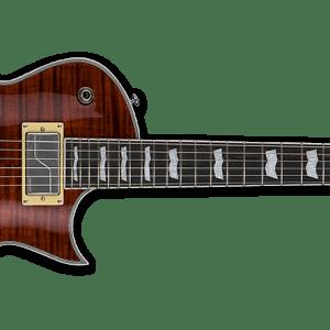 NEW ESP LTD EC-1000 FLUENCE Tiger Eye Electric Guitar