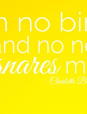 I am no bird and no net ensnares me - Charlotte Bronte Quote