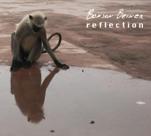 Bonson-Berner-Reflection