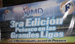 baseball-clinics-0 YSF 3rd Annual Coaches Clinic | Peñasco in the Major Leagues