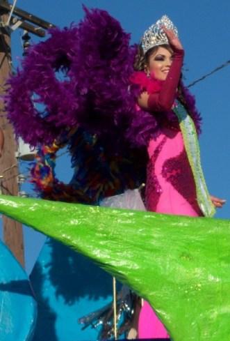 100_3441-419x620 2012 Vive la Fiesta! Carnaval Queens & Parades