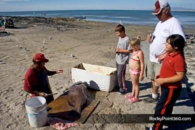 mg_0529- CBSC Fishing Derby in Cholla Bay