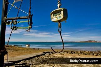mg_0537- CBSC Fishing Derby in Cholla Bay