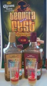 100_3999-338x620 Tequila Fest June 16th ~ Un festival para toda la familia!