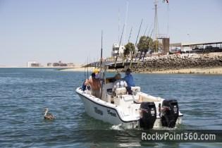 rocky point 5th deep sea fishing tournament 2012- 5° torneo de pesca profunda en Puerto Peñasco