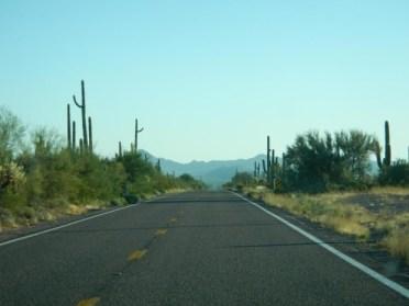 road-to-sonoyta