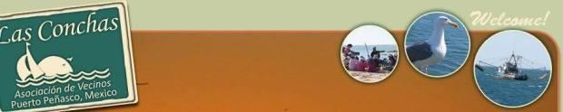 las-conchas-hoa