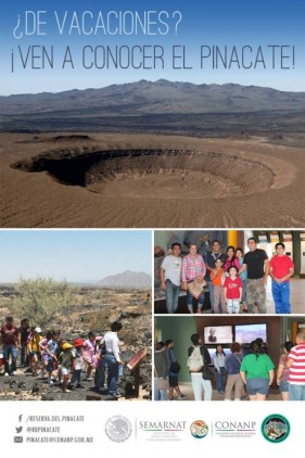 pinacate-ven-a-conocer-630x945 Let the music play!  Rocky Point Weekend Rundown!