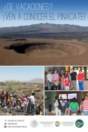 pinacate-ven-a-conocer-630x945 ¡Qué Padre! Rocky Point Weekend Rundown!