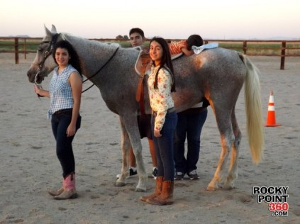 equine-therapy-2-630x472 Equine Therapy born from family's passion for horses