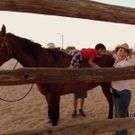 equine-therapy-7 What Novem-brrr ? Rocky Point Weekend Rundown!