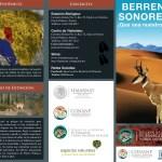 berrendo4 Efforts to preserve Sonoran Pronghorn Antelope