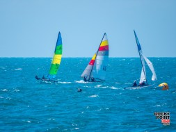 Cinco de Mayo Hobie Points Regatta 2015-003