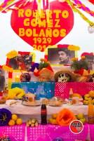 Altares-y-catrinas-2015-012- Altares y Catrinas 2015