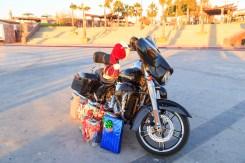 king-day-moto
