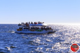 ecofun-whalewatching-001-1200x800 Spring! Break!  Rocky Point Weekend Rundown!