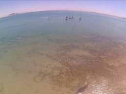 sup-abril3 SUPing the Sea of Cortez!
