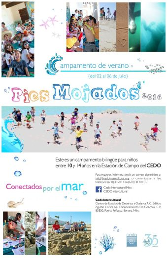Flyer_Campamento-Pies-Mojados2016_2-300dpi-777x1200 Get your Feet Wet! CEDO Summer Camp  July 2nd-6th