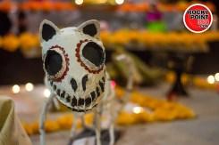 011-05-altares-4 Día de Muertos en Puerto Peñasco